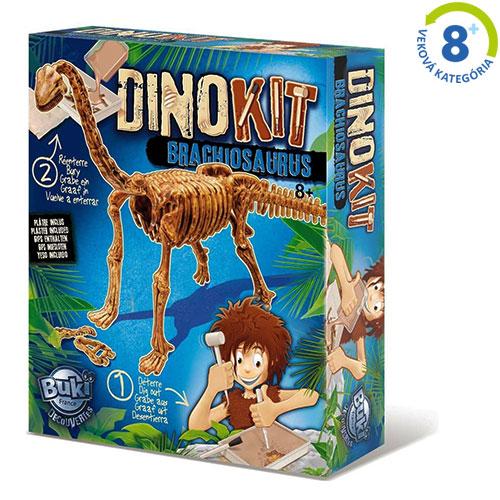 Vykopávka - Brachiosaurus